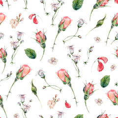 Watercolor seamless pattern with buds of rose
