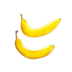 The bananas isolated on white background, watercolor illustration fruit set in hand drawn style.