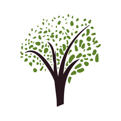 Beautiful tree isolated icon vector illustration graphic design