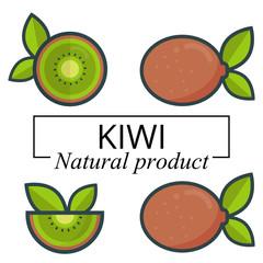 cartoon kiwi set with text