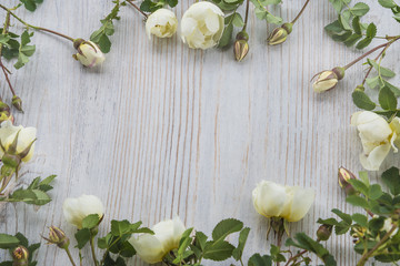 celebration concept/white wild rose flowers frame on light wooden background