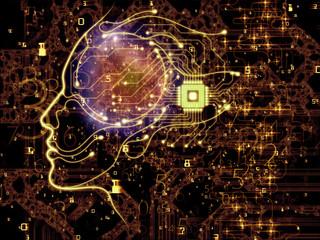 Inner Life of Machine Consciousness