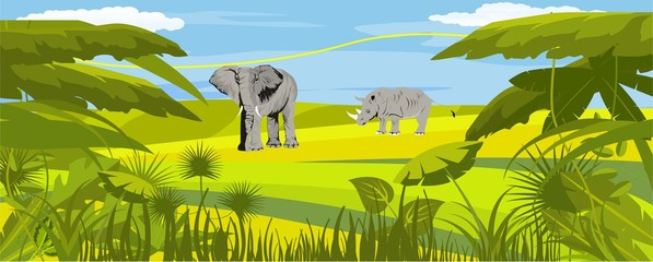 Horizontal vector illustration of african savannah