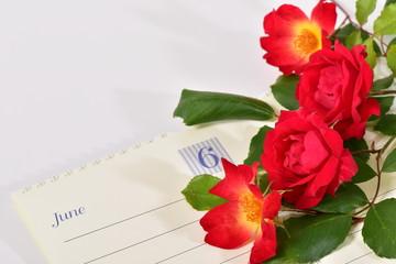 バラの花と6月のカレンダー
