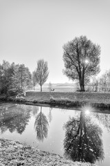 Monochrome high key scenic photo of an autumnal idyllic sunrise at a river with water reflections of trees and the sun, sunrays, a path to wander and a bench to rest, hoar frost the fields and  grass