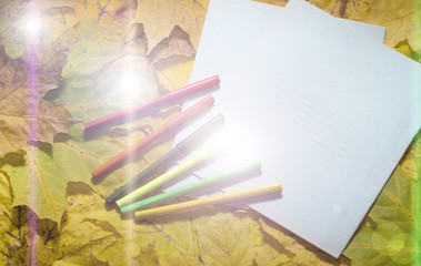 school notebooks and pens at the autumn yellow leaves