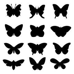 Black butterflies set on white background