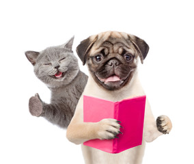Funny cat and smart puppy with book. isolated on white background