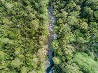 Aerial view of river in dense forest in Corsica, France