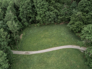 Aerial view of footpath in forest