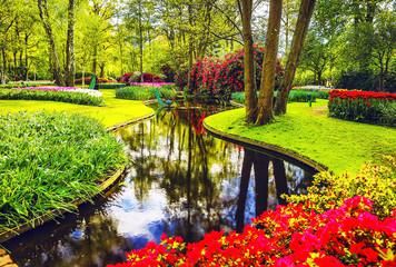 Fototapeten Lime grun Blooming Garden of Europe, Keukenhof park. Netherlands.