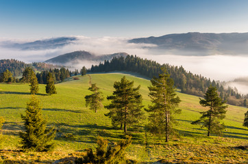 Morning panorama of Pieniny and Beskidy mountains, Poland landscape