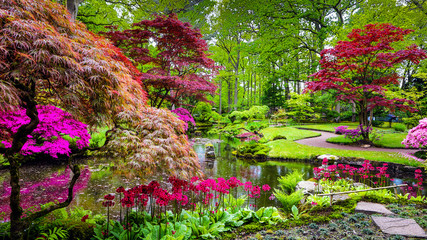 Photo sur Toile Jardin Traditional Japanese Garden in The Hague.