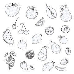 Set of hand-drawn sketch of fruits and berries, vector isolated on white