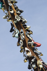 High Heel Shoe Tree