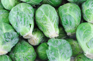 fresh brussel sprout vegetable as food background