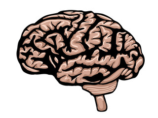 Cartoon colored brain