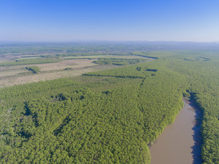 The aerial view of the muddy lake and the forest.