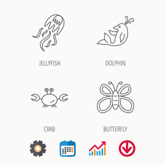 Jellyfish, crab and dolphin icons. Butterfly linear sign. Calendar, Graph chart and Cogwheel signs. Download colored web icon. Vector