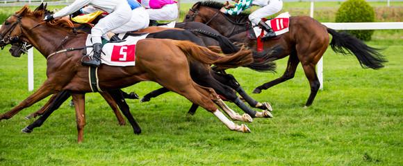 Photo sur Plexiglas Equitation Race horses with jockeys on the home straight