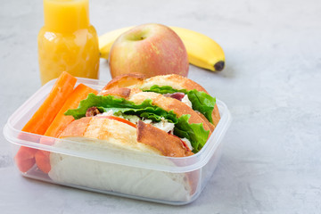 Lunch box with chicken salad sandwiches, served with carrot sticks, horizontal, copy space