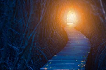 Tunel światła 3D