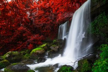 Photo sur Aluminium Rouge mauve Romklao Paradon Waterfall.