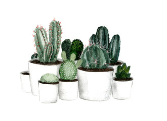 Watercolor green cactus set in white pots