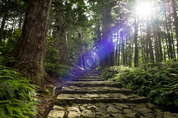熊野古道、神秘的な光