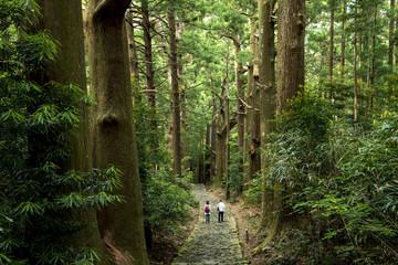 熊野古道、大門坂