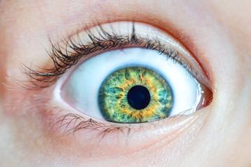 Enlarged green eye, close-up