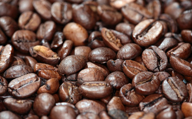 texture background of coffee beans