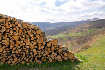 Poster Hill panorama of the emilia romagna hills with woodpile