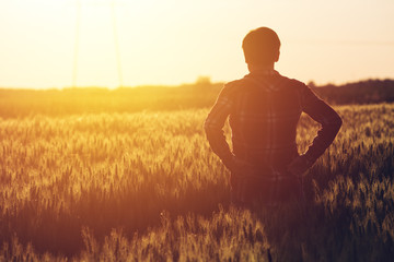 Concerned female agronomist standing in cultivated wheat crops field