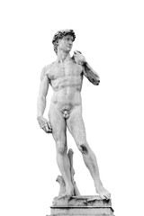 Garden Poster Historic monument The replica of David, statue by Michelangelo isolated on white background. Picture is taken in the Piazza della Signoria in Florence, Italy
