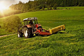 Traktor mit Mähwerk bei der Heuernte in der Abendsonne
