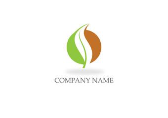 organic green leaf nature logo
