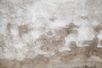 Wall Mural - Dark gray concrete wall with wet pattern