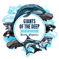 Big giant sea animals or fish vector poster