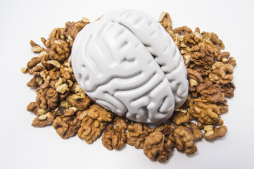 Walnuts like healthy food for the brain. Shape of human brain is surrounded by walnut kernels. It symbolizes how brain similarity with walnuts and proven effectiveness as healthy food for brain
