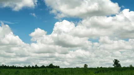 Fototapete - timelapse 4K. The movement of clouds over clouds over the sugar cane fields.