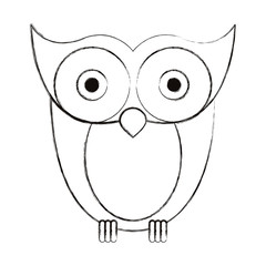 sketch blurred silhouette image owl bird vector illustration