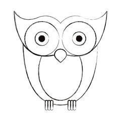 sketch blurred silhouette image owl bird vector illustration