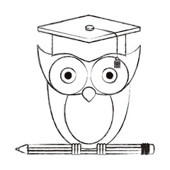 sketch blurred silhouette owl knowledge with cap graduation on pencil vector illustration