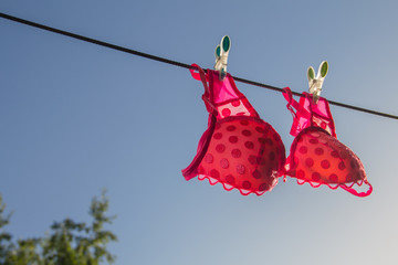Сlothesline with a pink bra