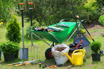 Obraz Work in the garden - planting plants - fototapety do salonu