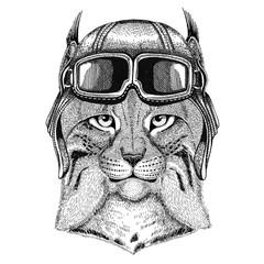 Wild cat Lynx Bobcat Trot wearing leather helmet Aviator, biker, motorcycle Hand drawn illustration for tattoo, emblem, badge, logo, patch
