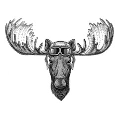 Moose, elk wearing leather helmet Aviator, biker, motorcycle Hand drawn illustration for tattoo, emblem, badge, logo, patch