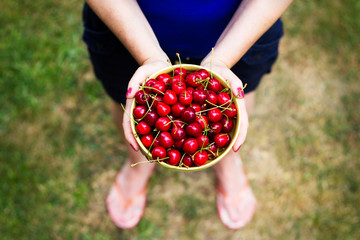 Young woman holding in her hands a bowl of freshly picked sweet cherries. Top view, focus on cherries.