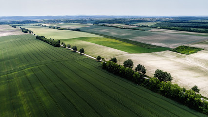 Staande foto Luchtfoto Aerial view landscape from a hungarian country